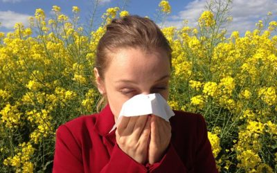A Natural Approach to Seasonal Allergies